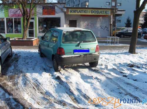 foto: Straż Miejska  Foto: