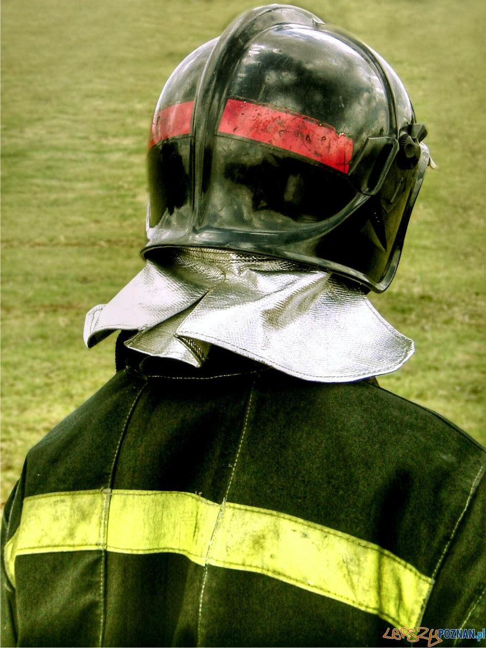 strażak  Foto: sxc