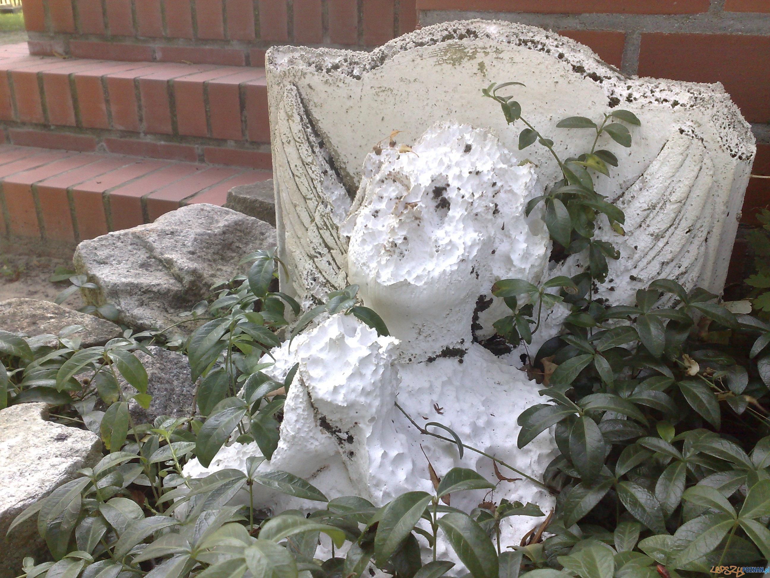 Aniołek przy kościółku w Kicinie  Foto: TD