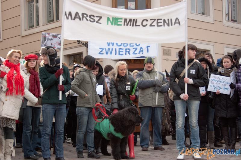 Marsz (NIE) Milczenia w obronie praw zwierząt - 13.02.2011 r.>  Foto: LepszyPOZNAN.pl / Paweł Rychter