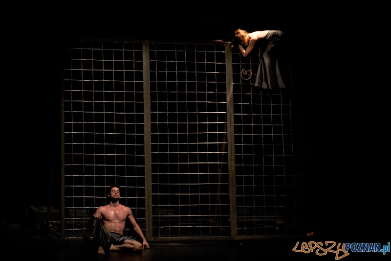 IV Festiwal Atelier Polskiego Teatru Tańca – Przelotnie  - 26.02.2011 r.  Foto: LepszyPOZNAN.pl / Paweł Rychter