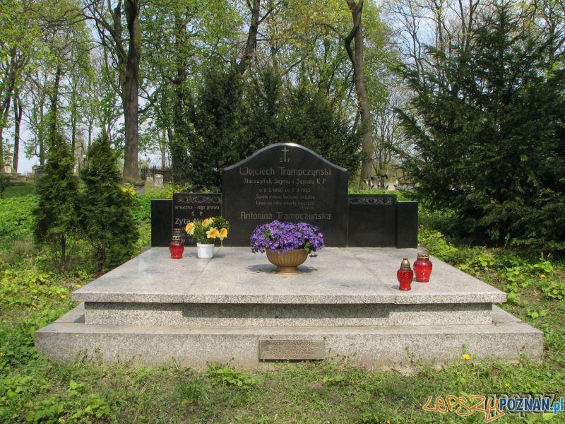 Grób marszałka Trąpczyńskiego na Cmentarzu Zasłuzonych Wielkopolan  Foto: http://www.city.poznan.pl/mapa_geopoz