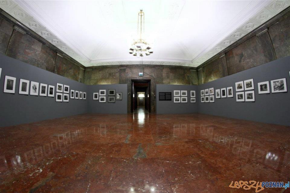 Cień socrealizmu – fotografia poznańska w pierwszej połowie lat 50. XX wieku  Foto: Maciej Kaczyński