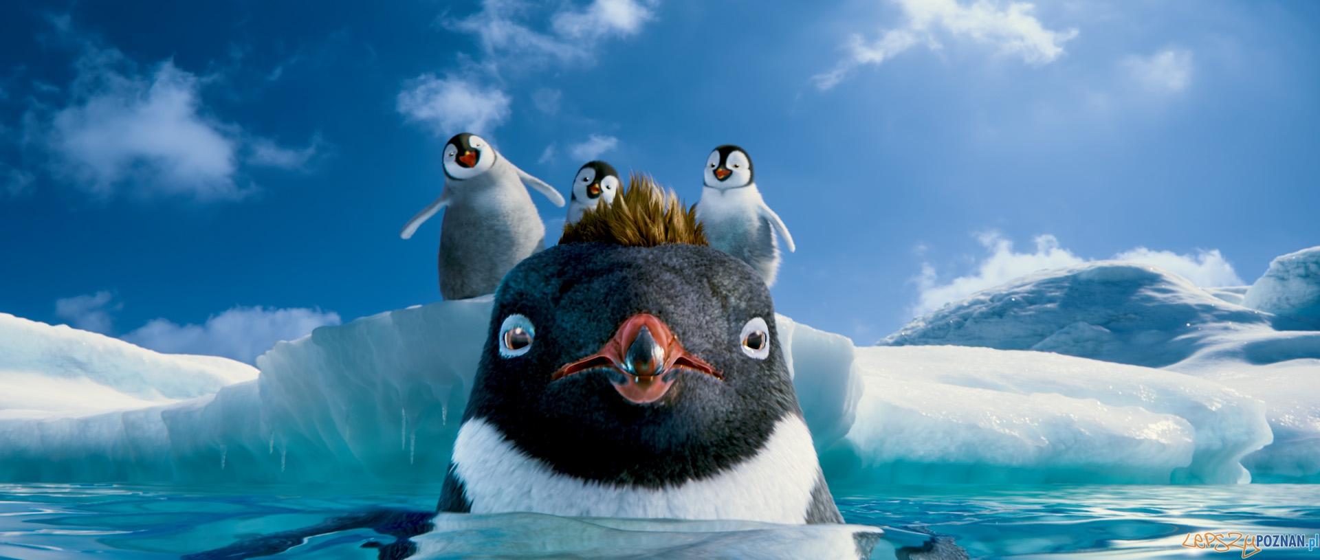 Happy Feet: Tupot małych stóp 2 3D  Foto: Warner bros. Entertainment Inc.
