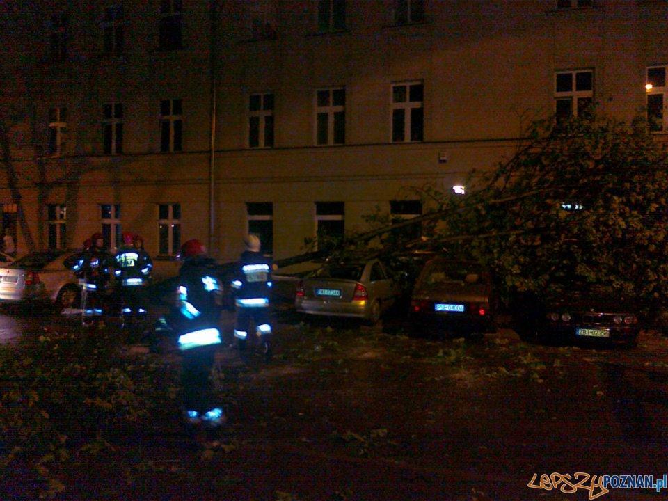 Zniszczone samochody na Wildzie (maj 2012)  Foto: Dominik Rutkowski