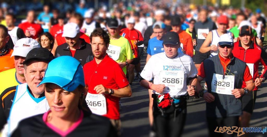 12 Poznań Maraton  Foto: lepszyPOZNAN.pl / ag