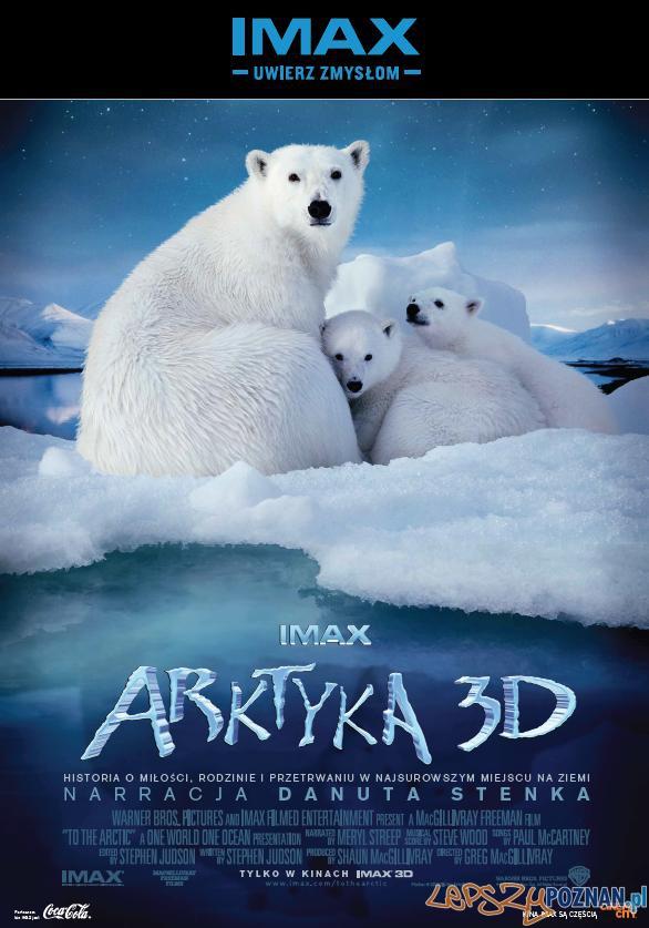 IMAX_Arktyka 3D  Foto: IMAX_Arktyka 3D