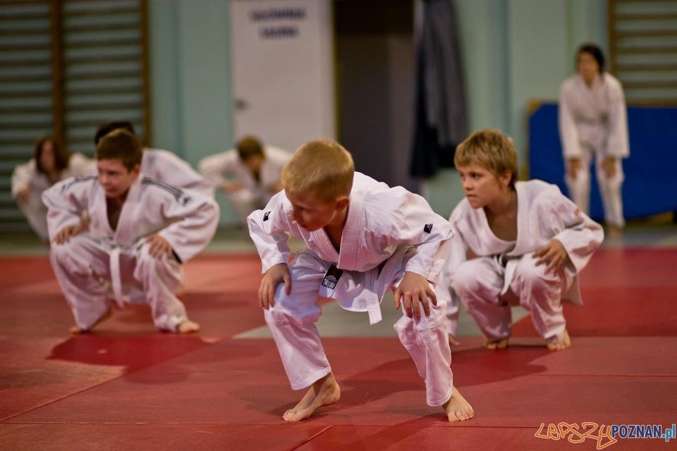 Zajęcia judo  Foto: T. Szwajkowski