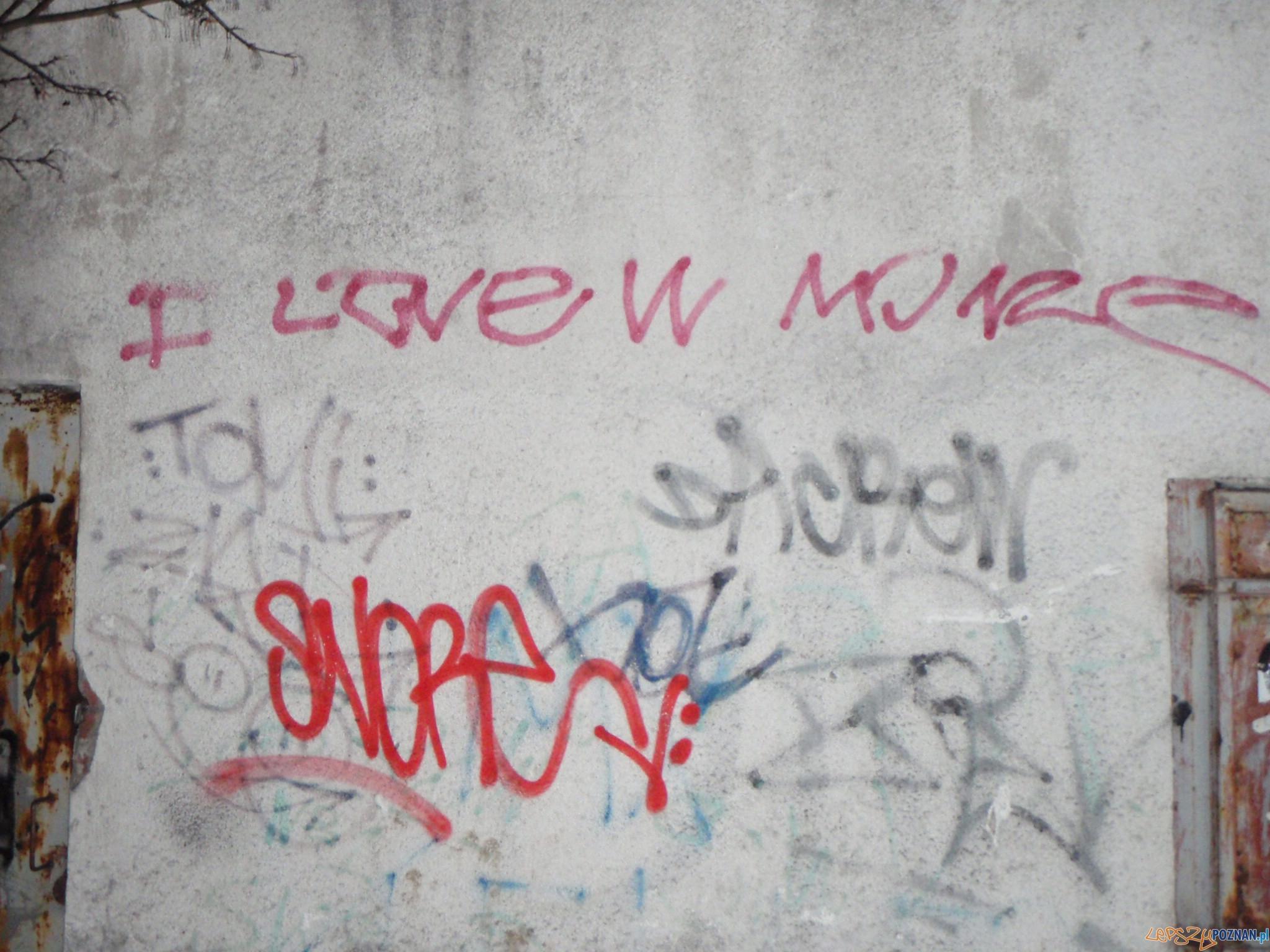 Kolejni grafficiarze złapani  Foto: Straż Miejska w Poznaniu