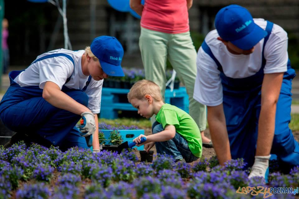 Sadzenie kwiatów w akcji VW  Foto: materiały prasowe