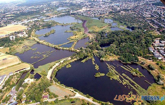 Glinianki na Świerczewie  Foto: Rada Osiedla Swierczewo