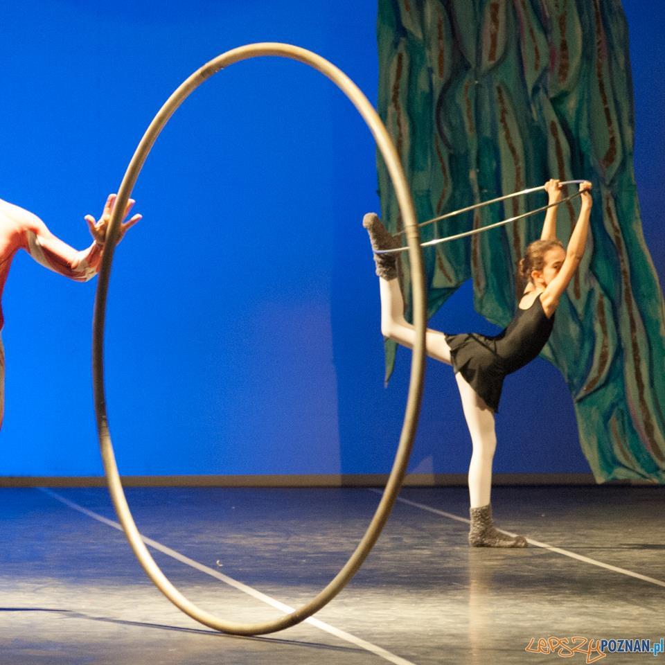 Szkoła Baletowa Anny Niedźwiedź  Foto: facebook