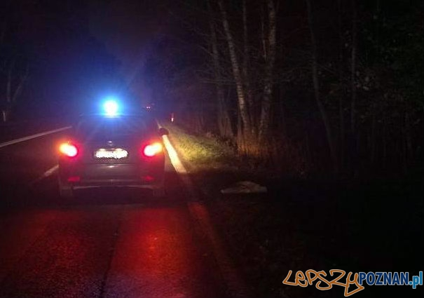 Kobieta wyrzucona z samochodu  Foto: Głos Wielkopolski / Pilar
