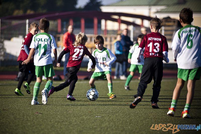 Liga Koziołka  Foto: Łukasz Bigus