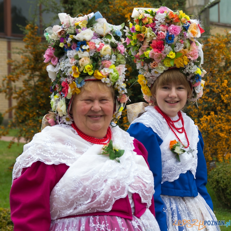 Pyra Poznańska  Foto: lepszyPOZNAN.pl / Piotr Rychter