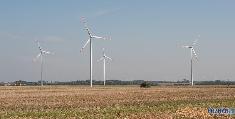 ENEA elektrownia_wiatrowa  Foto: