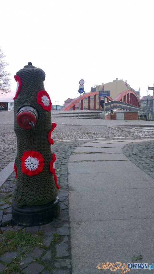Patriotyczne hydranty  Foto: Aquanet