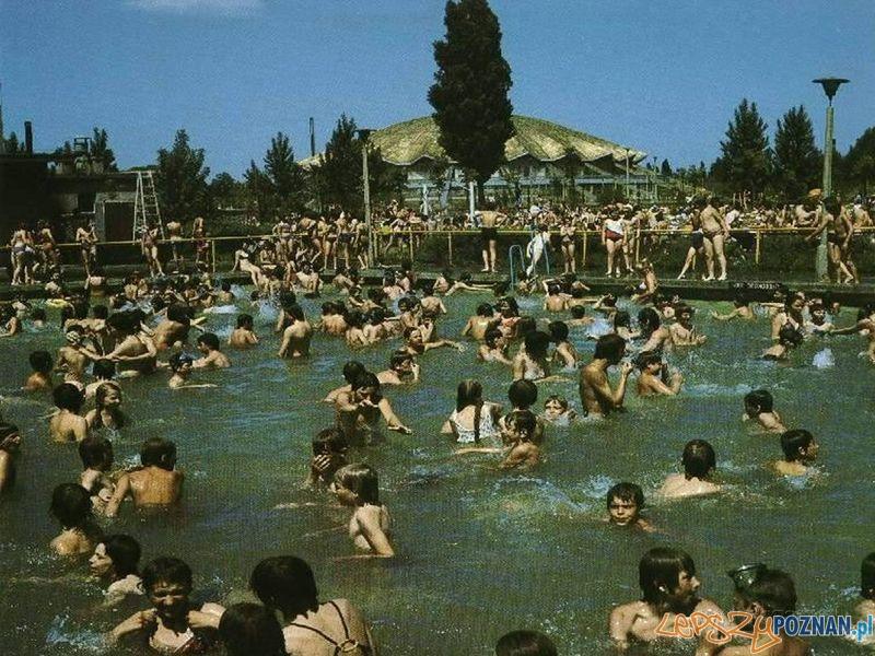 Pływalnia Olimpi - park Kasprowicza  Foto:
