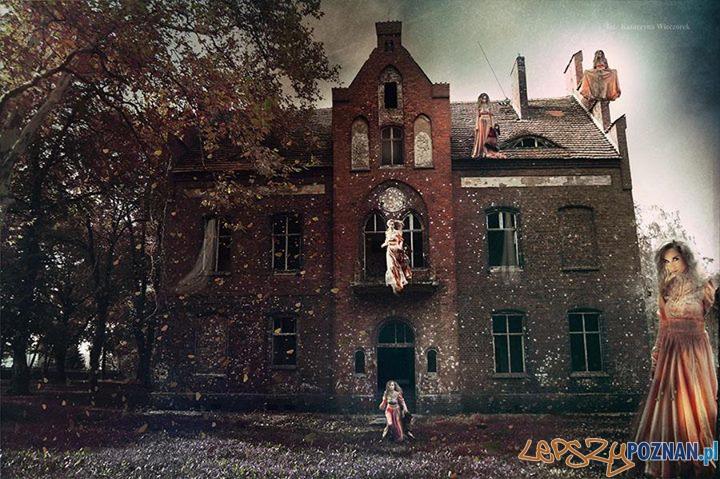 Psychiatrym Owińska zaprasza na film  Foto: