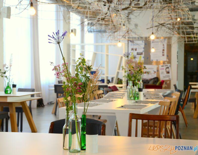 Concordia Design - restauracja  Foto: