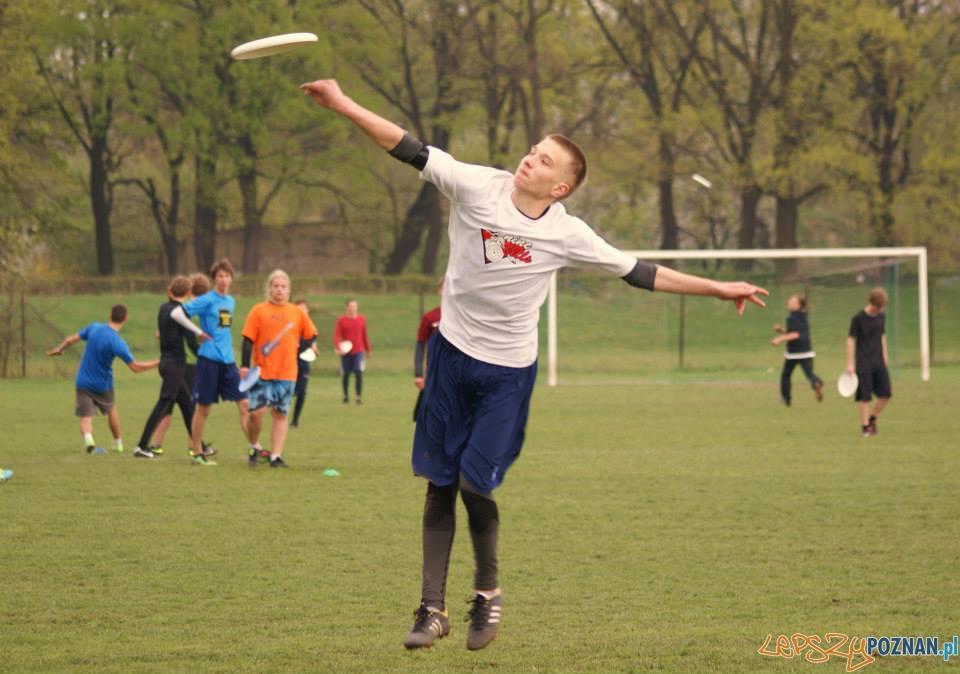 Ulitimate frisbee (8)  Foto: