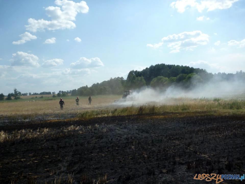 Pożar zboża  Foto: JRG-8