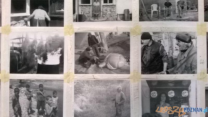 Poznańscy artyści w Bułgarii (5)  Foto: Ventzislav Piriankov