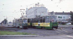 Kaponiera 1993  Foto: