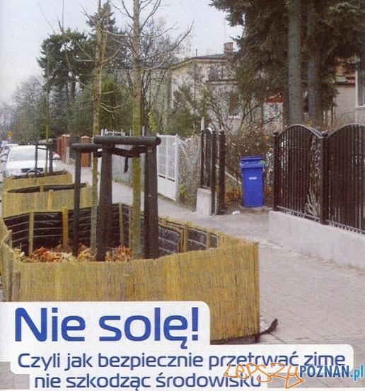 Nie solę  Foto: ZDM