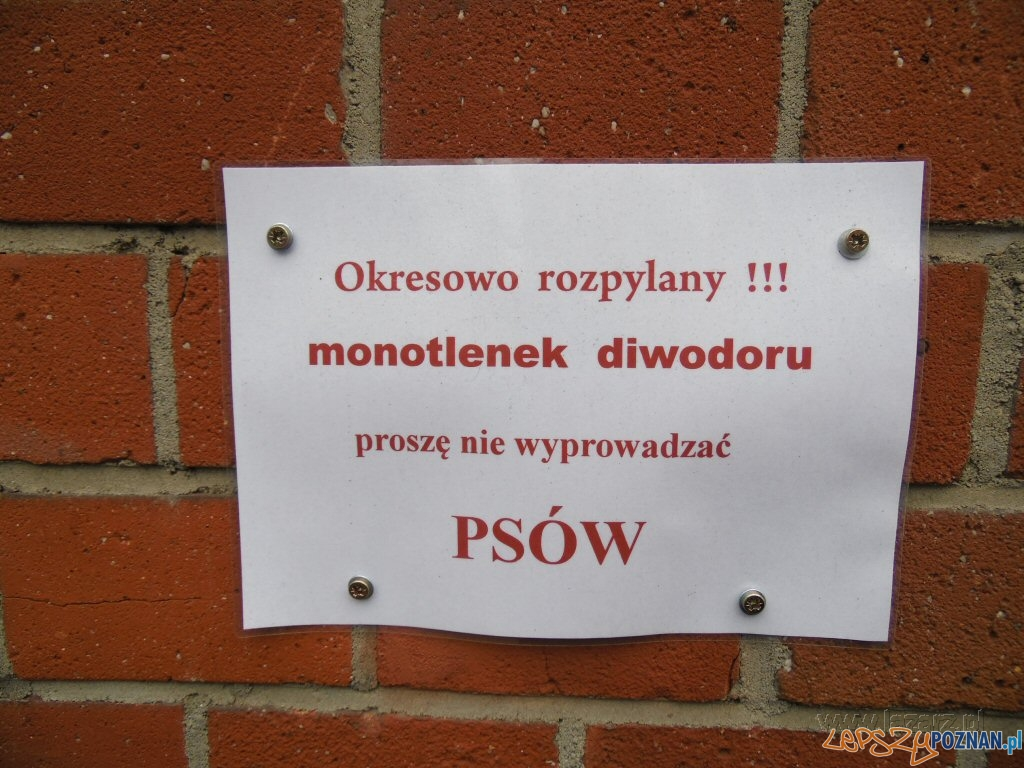 Monotlenek diwodoru straszy właścicieli kejtrów  Foto: lazarz.pl / Janusz Ludwiczak