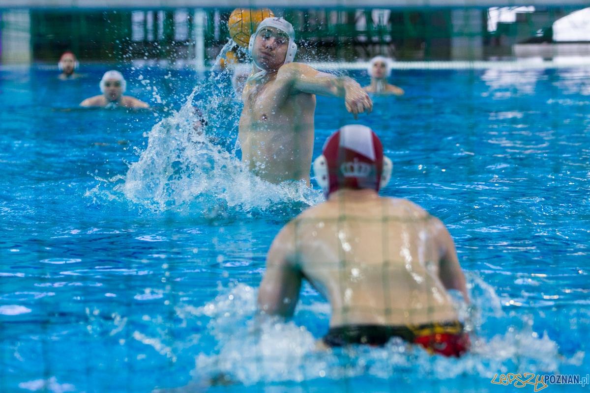 DSW Waterpolo Poznań - Arkonia Szczecin  Foto: lepszyPOZNAN.pl / Piotr Rychter