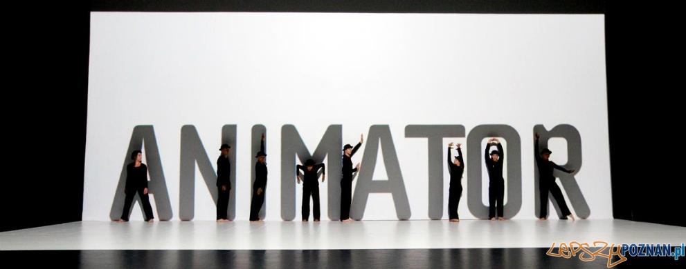 Animator 2015  Foto: mat. pras.