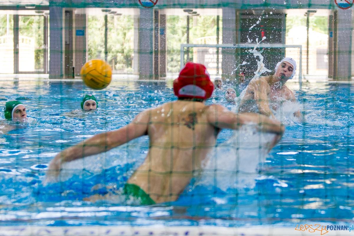 DSW Waterpolo Poznań - UKPW Legia Warszawa  Foto: lepszyPOZNAN.pl / Piotr Rychter