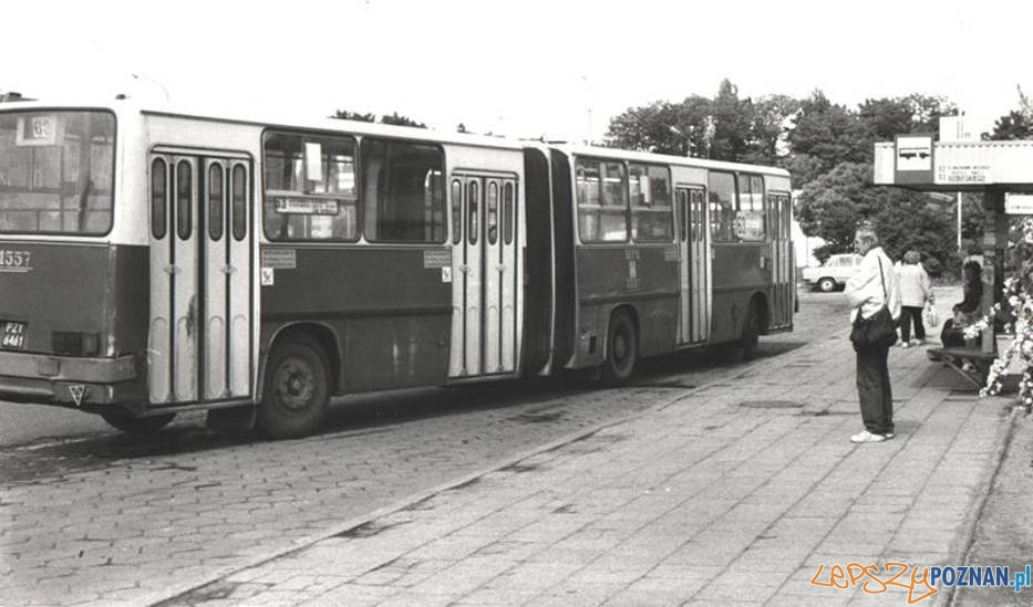 Ikarus na Górczynie, początek lat 90.tych  Foto: Piotr Kopa