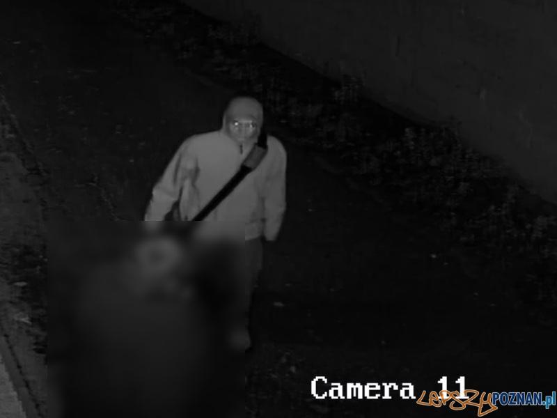 Nożownik zaatakował kobietę w Kórniku  Foto: KWP w Poznaniu
