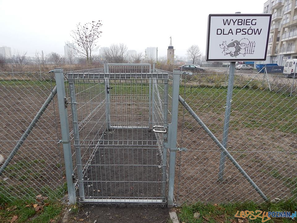Wybiegi na psów na Ratajach_  Foto: Rada Osiedla Rataje