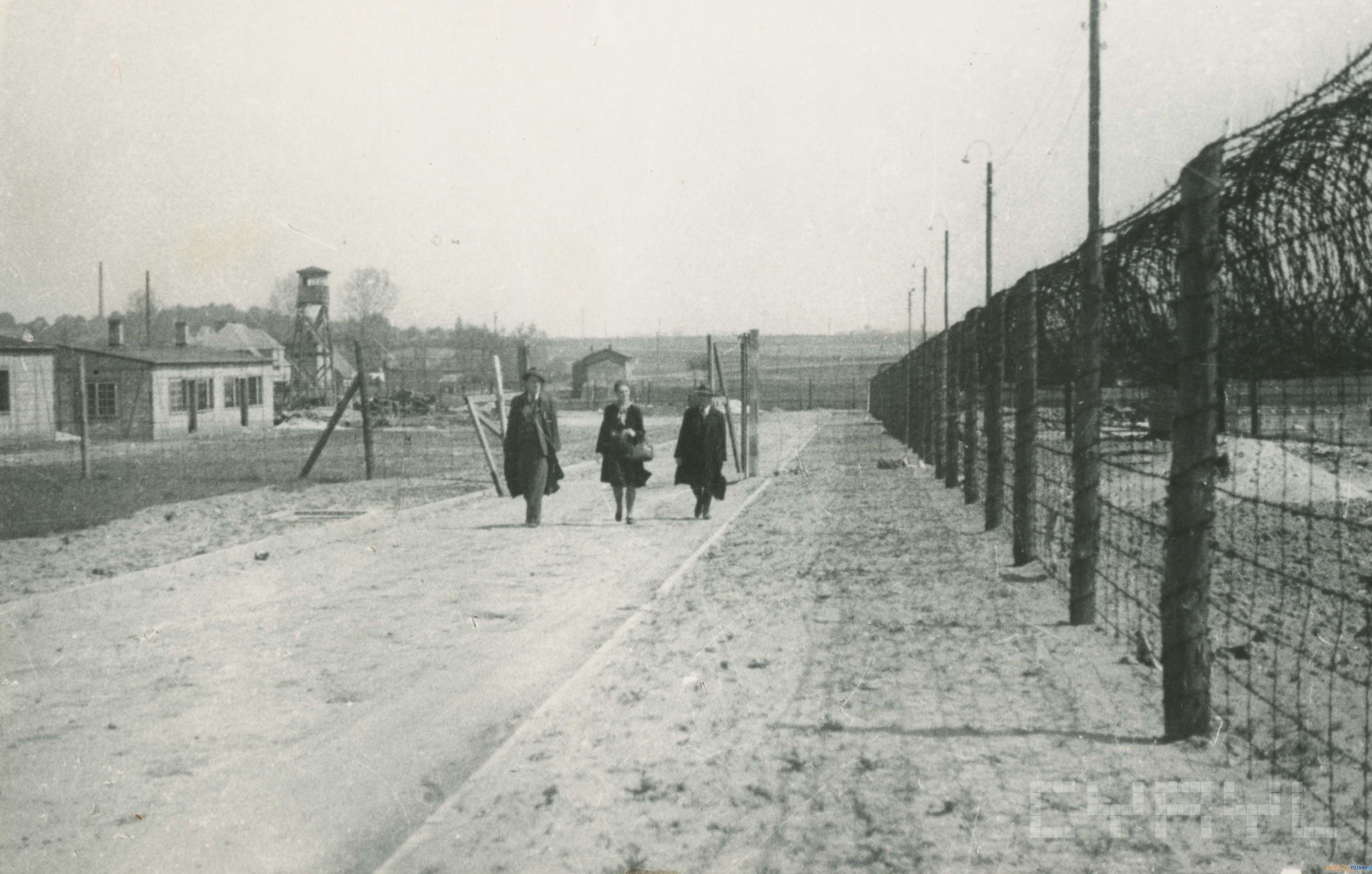 Obóz w Żabikowie po wyzoleniu 1945 r  Foto: Zbigniew Zielonacki / Cyryl