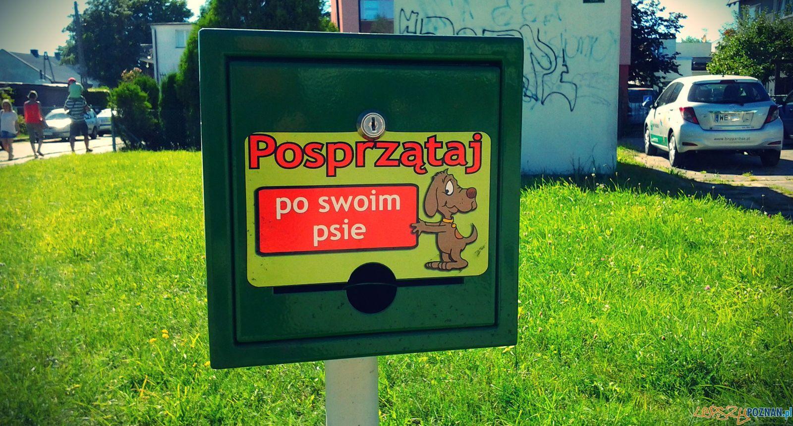 Posprzataj po psie  Foto: lepszyPOZNAN.pl / tab 10.1