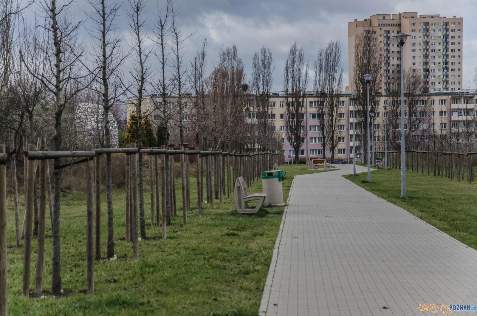 Sieżka na Ratajach  Foto: Poznańskie Inwestycje Miejskie