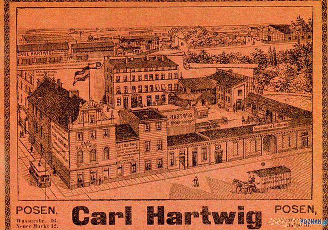 Carl Hartwig  Foto: