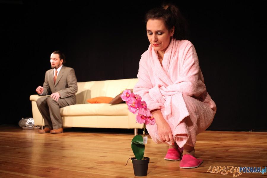 Scenie na Piętrze zaprasza na spektakl Trzy świnki  Foto: Marek Lalko / Fundacja Tespis