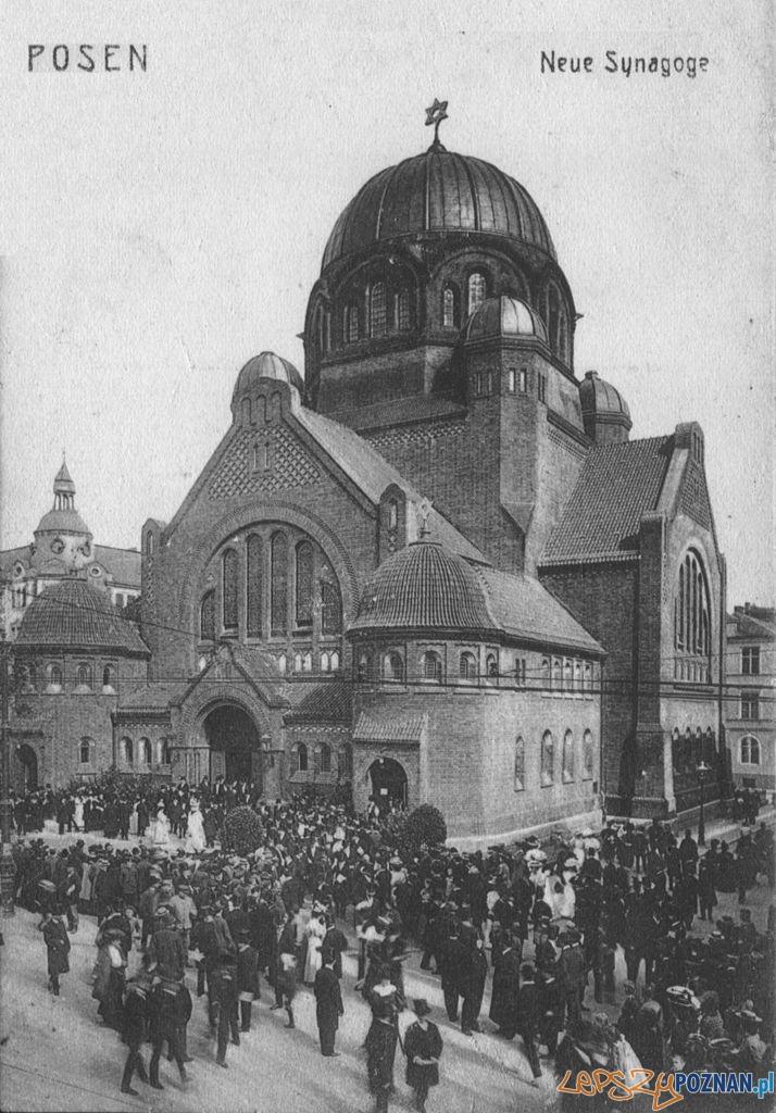 Nowa Synagoga  Foto: