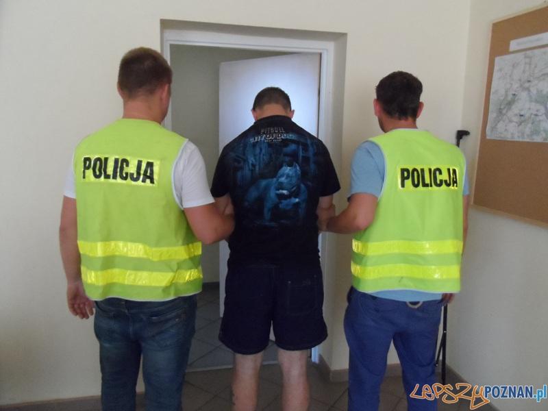 Narkotyki w lodówce  Foto: KWP w Poznaniu