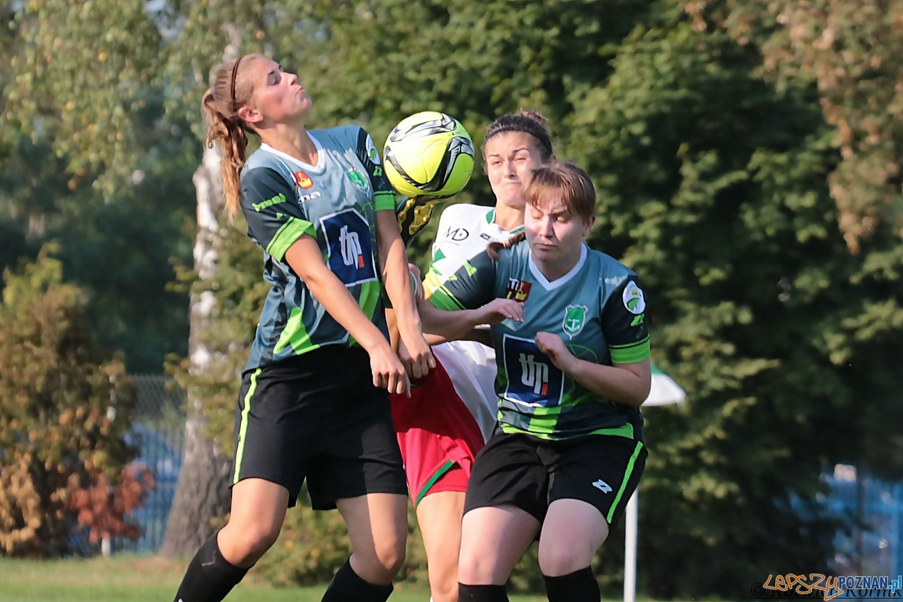 Kotwica I 2 liga  Foto: Kotwica Kórnik