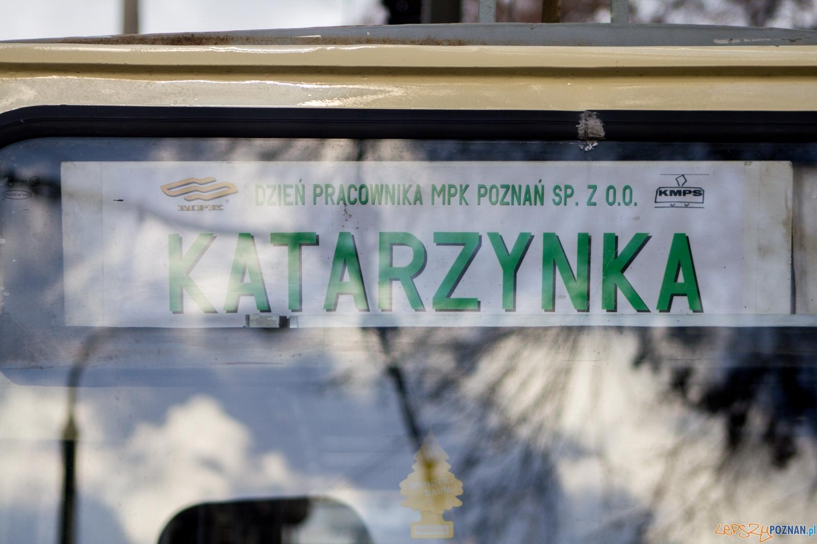 lp-3982  Foto: Ewelina Jaśkowiak