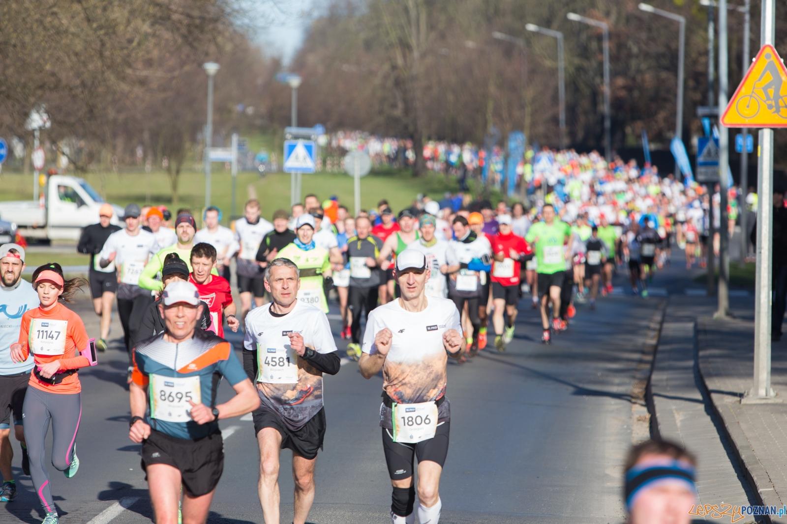 10. PKO Poznań Pólmaraton  Foto: lepszyPOZNAN.pl / Piotr Rychter
