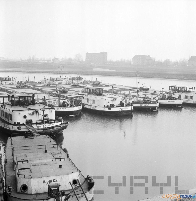 Barki na Warcie w porcie przy Szyperskiej - 16.03.1975  Foto: Stanisław Wiktor / Cyryl