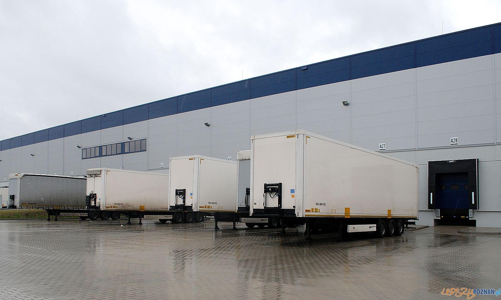 Nowe miejsca pracy w firmie transportowo-logistycznej  Foto: mat. prasowe