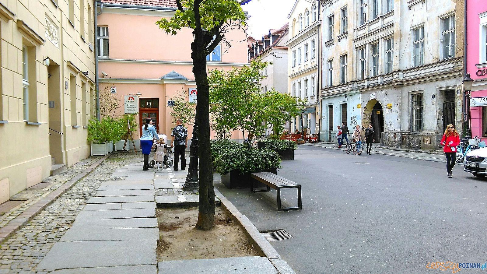 Skwer przy ul. Żydowskiej  Foto: TD / ROSM