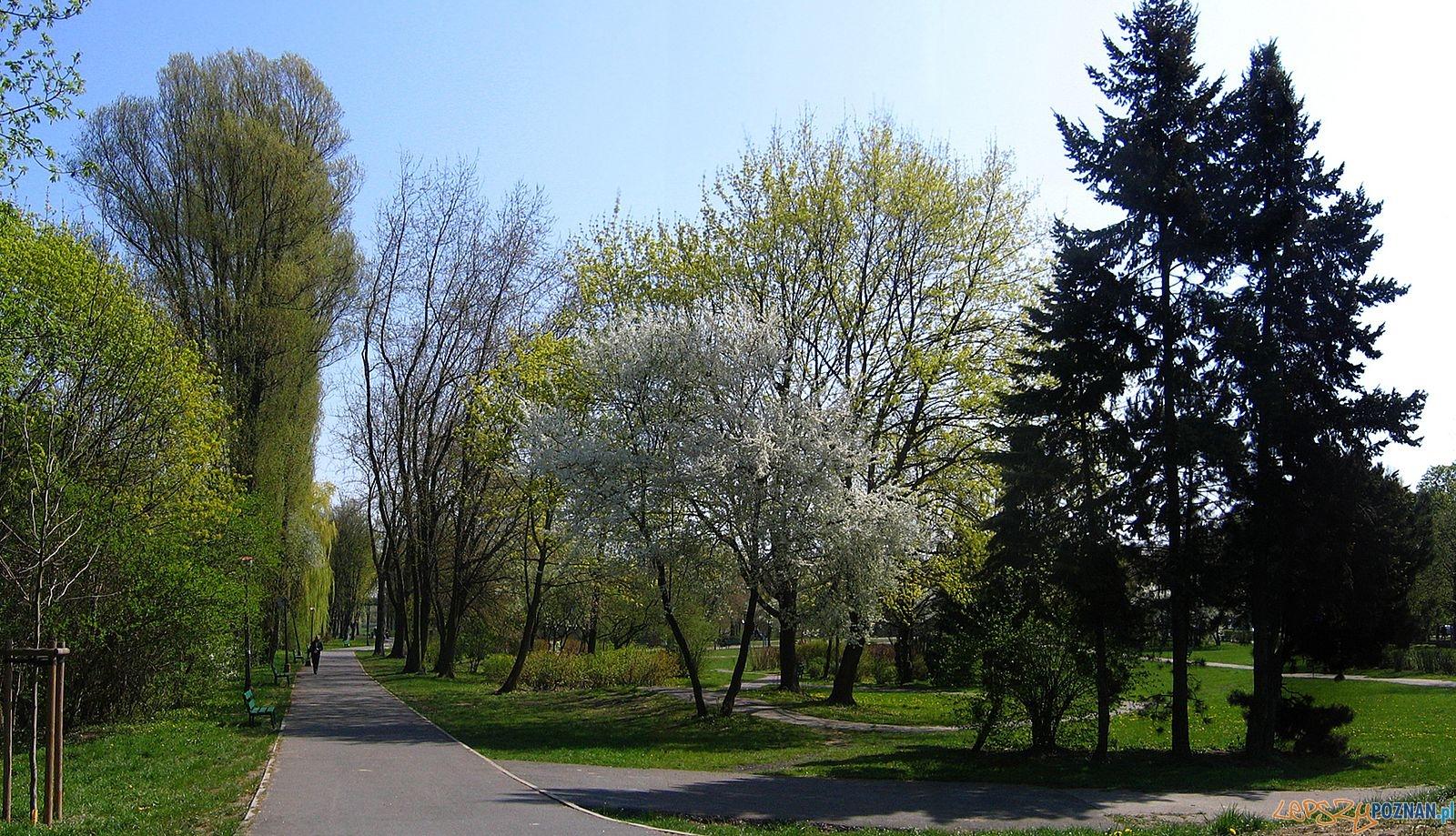 Park im. Adama Wodziczki  Foto: Kura / wikipedia